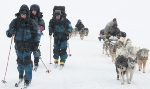 Stein's skiing adventures