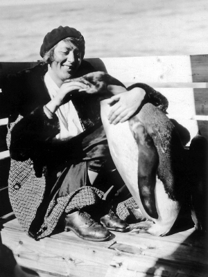 King penguin being fed by woman.