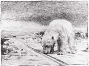 Nansens drawing of a polar bear